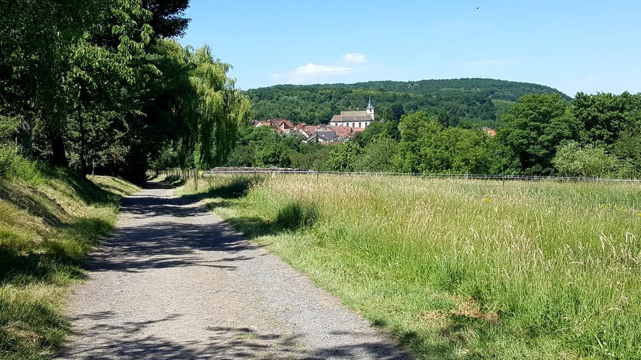 https://apps.tourisme-alsace.info/photos/rosheim/photos/258002239_1.jpg