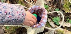 Chasse aux œufs à Marmoutier (6 ans ou plus)
