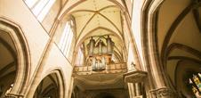 Organ Concert in Marmoutier