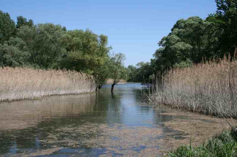 La Réserve Naturelle Delta de la Sauer