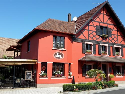 https://apps.tourisme-alsace.info/photos/seltz/photos/267000178_1.jpg