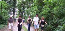 Sentier pédestre : Circuit du Nierderwald