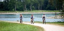 Circuit vélo : des villages pittoresques aux bords du Rhin