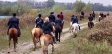 Promenades et randonnées à cheval ou en calèche
