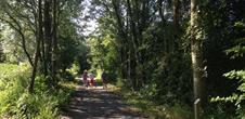 Sentier d'interprétation : les arbres de notre région