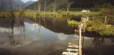 Balade autour du See d'Urbès