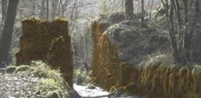 La scierie construite sur le ruisseau