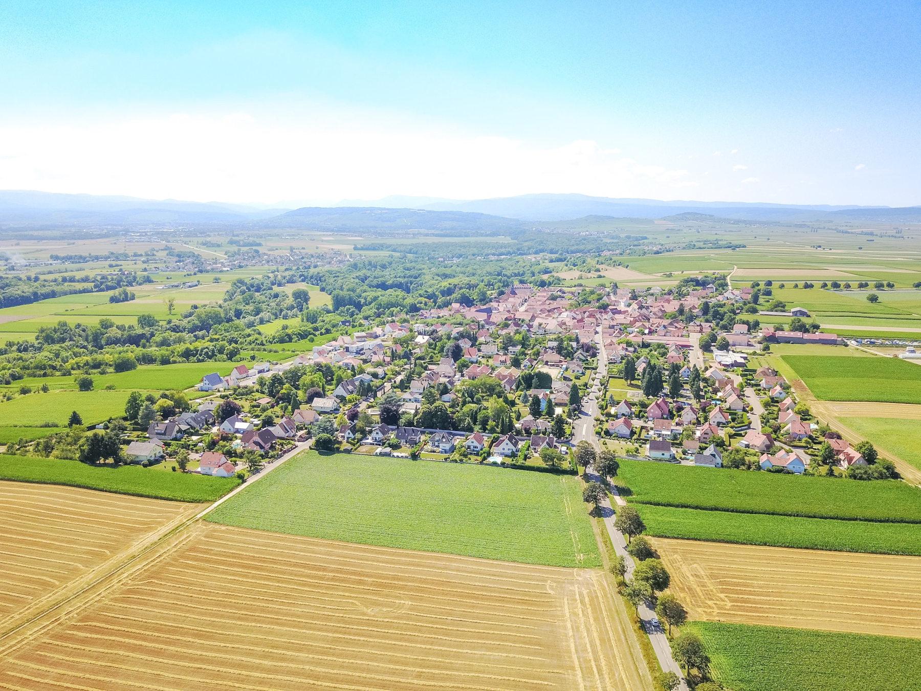 Visite-conférence : A la découverte de Kolbsheim