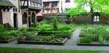 Le jardinet gothique du musée de l'Oeuvre Notre Dame