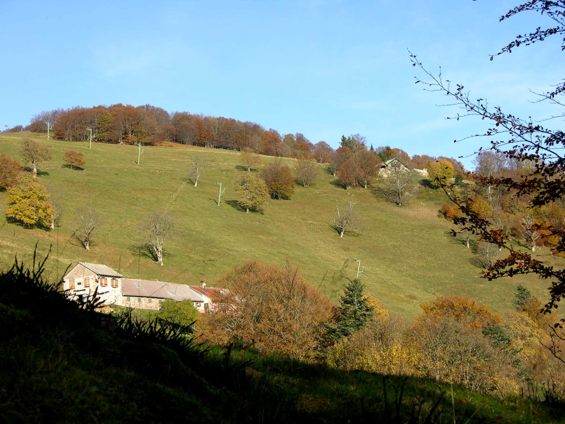 Berggasthof Thannerhubel