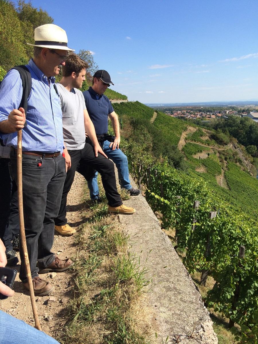 The Rangen vineyard