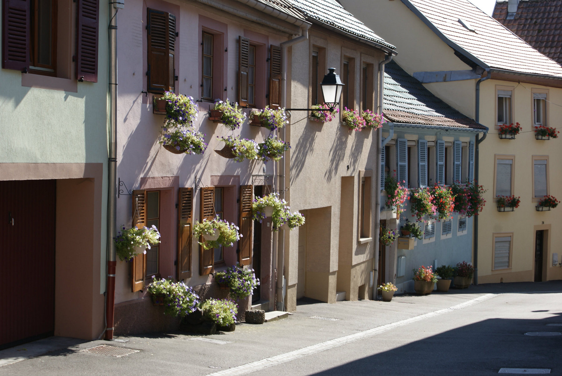https://apps.tourisme-alsace.info/photos/thann/photos/239005259_1.JPG
