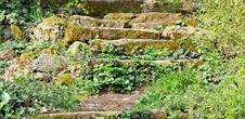 Escalier de liaison