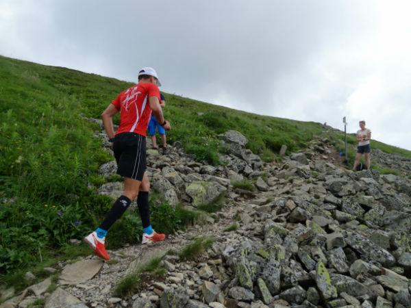 Rando trail : le Molkenrain