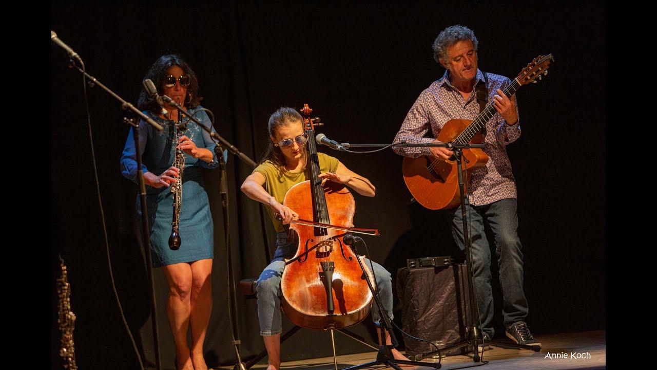 Concert : ViZ trio
