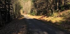Piste cyclable transfrontalière Villé-Elzach