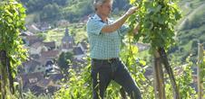 Vins d'Alsace Christian Barthel