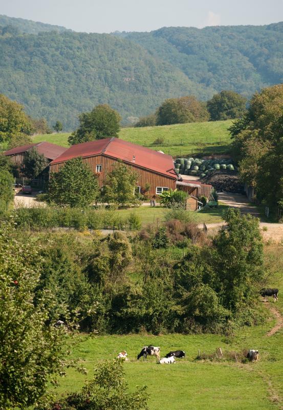 Gîte rural Gîte du Brechlingerthal