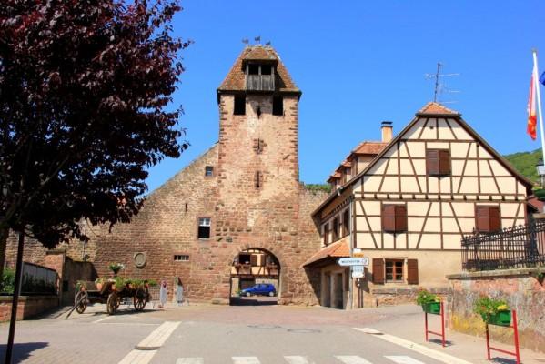 Vins et crémant d'Alsace Thierry-Martin