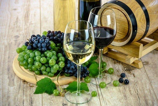 Bar à vin éphémère au Domaine Thierry Martin