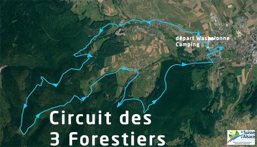 Base vtt circuit 8 des 3 forestiers wangenbourg engenthal - Wangenbourg engenthal office tourisme ...